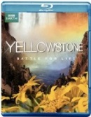 yellowstonebattlebd