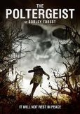 The Poltergeist of Borley Forest DVD