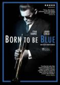 Born To Be Blue DVD.jpg