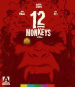 12 Monkeys.jpg